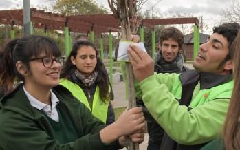 San Fernando: alumnos de la Escuela San Pablo forestaron y concientizaron en el Día del Árbol