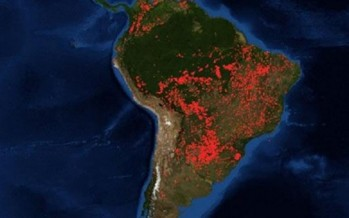 Amazonía, tan violentamente ardiente
