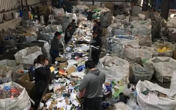 Tigre se convirtió en el primer municipio en certificar reciclables que recolecta