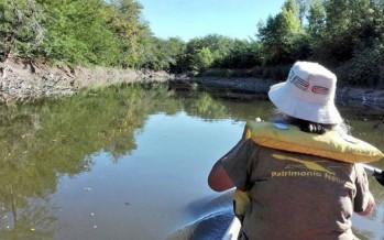 El río Luján entre la contaminación y el relleno de humedales
