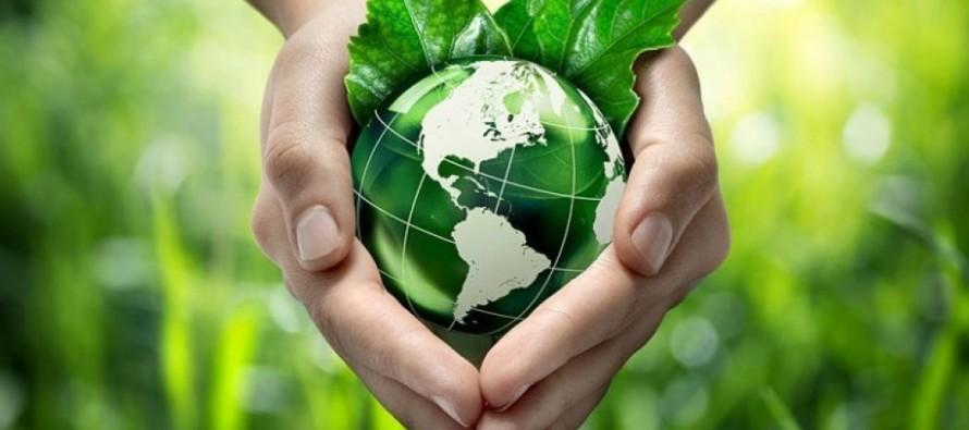 ¿Cómo alcanzar el Desarrollo Sustentable? Un recorrido por las escalas de la política ambiental