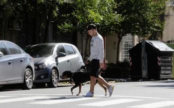 Coronavirus: instructivo oficial para sacar a los perros durante la cuarentena