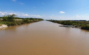 Arroyo Claro: cómo mejoró el curso contaminado a partir del aislamiento