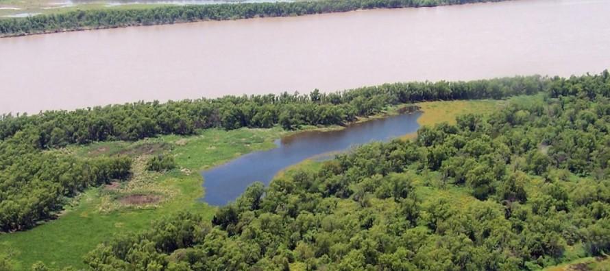 Reactivan plan para la conservación y el aprovechamiento sostenible del Delta del Paraná
