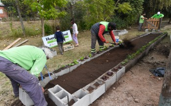 San Fernando tiene su primera huerta orgánica comunitaria