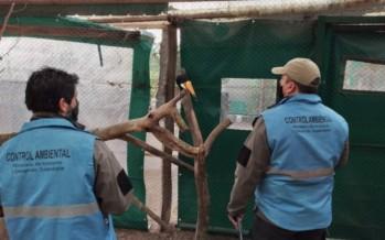 Ambiente decidió que el zoológico de Luján se mantendrá cerrado