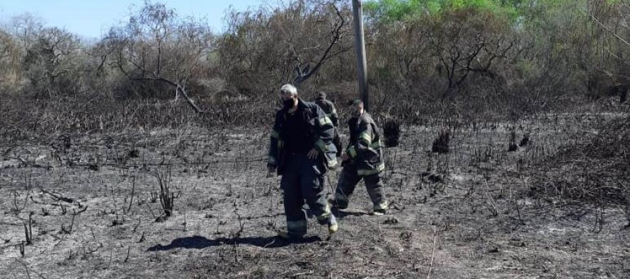 Los Bomberos extinguieron un incendio en el Delta de San Fernando