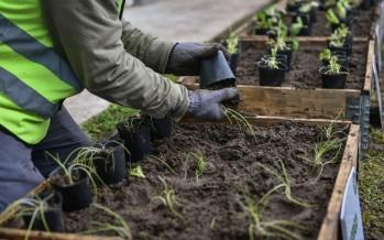 Escobar Sostenible: en octubre se recolectaron 20 toneladas de Residuos Sólidos Urbanos