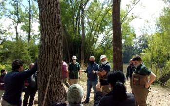 Relevamiento de biodiversidad en el Centro de Interpretación de Humedales de Tigre