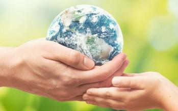 Cinco lecciones que nos deja el camino hacia una recuperación sostenible post Covid-19