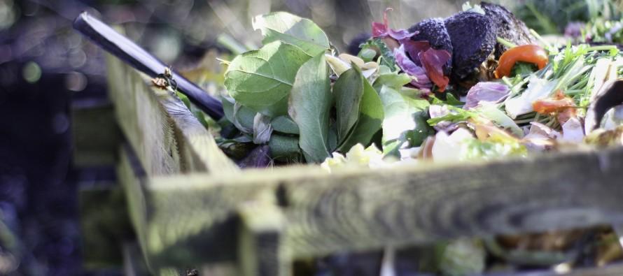Pasos y tips para aprender a compostar los residuos orgánicos en casa